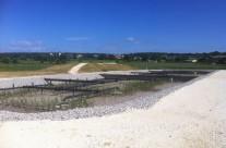 Station d'épuration par filtres plantés de roseaux 600 EH à 800 EH à Aubussargues